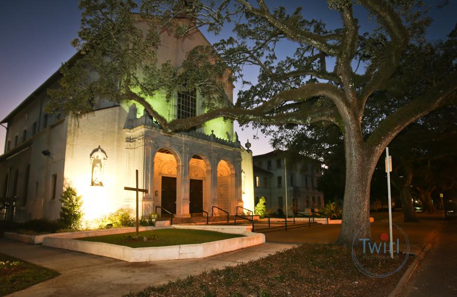 New Orleans Botanical Gardens Wedding Dawn And Paul Wedding Photography